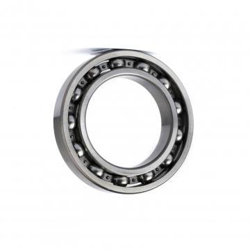 SKF/ NSK/ NTN/Timken/ Brand High Standard Own Factory Deep Groove Ball Bearings/Motor Bearing 6007